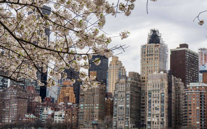 What is the Weather like in New York in Spring