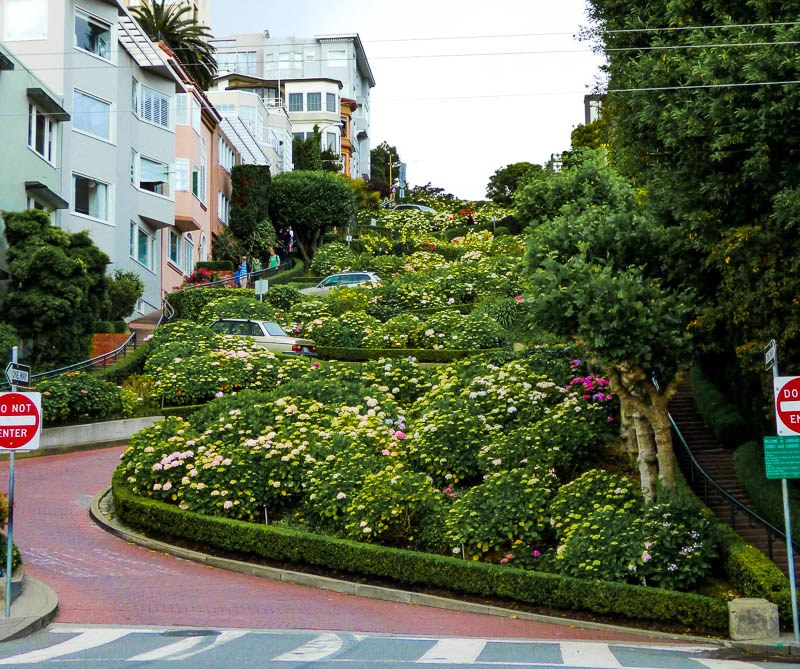 Getting Around San Francisco without a Car