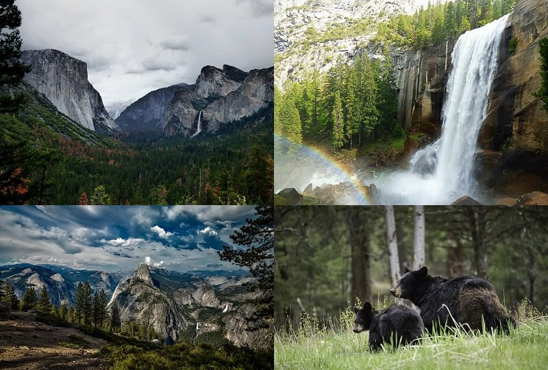 Yosemite roadtrip