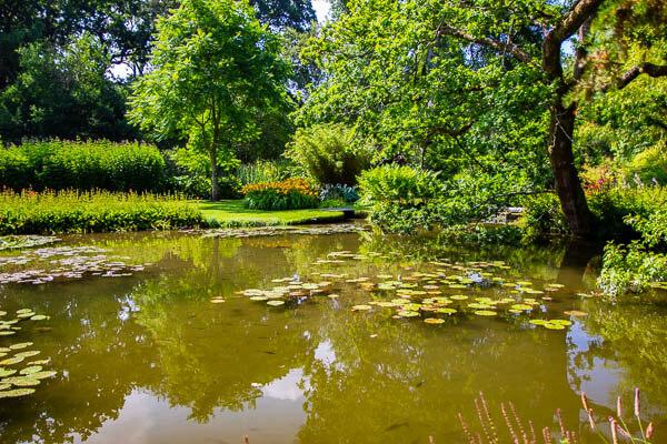 Longstock water gardens3