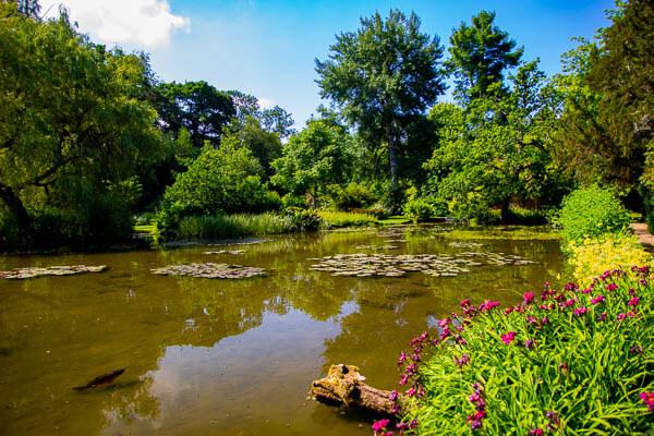 Longstock water gardens lake