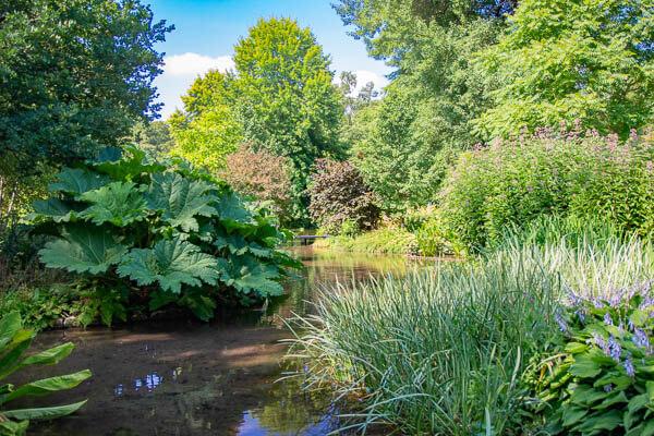 Longstock water gardens 2