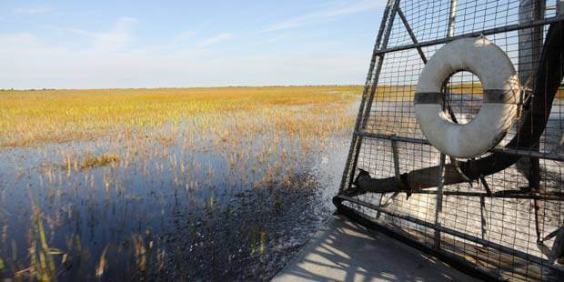 Gray Line Everglades Tour