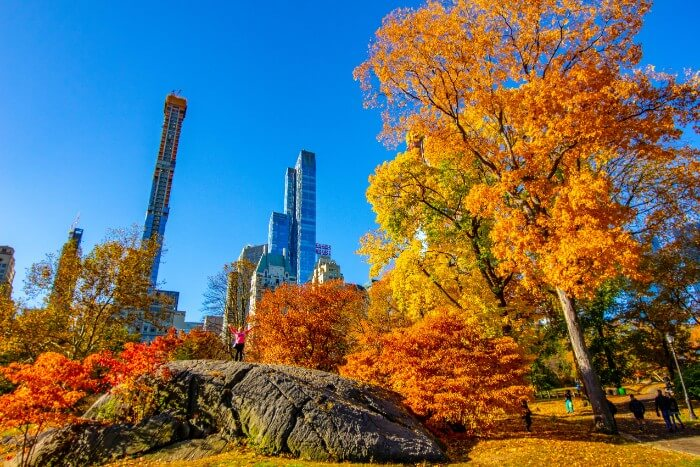 What is the Weather like in New York in Autumn/Fall
