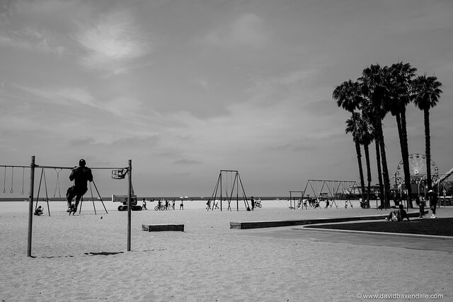 Origional Muscle Beach