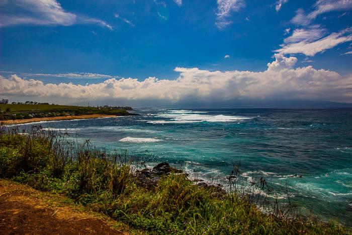 Wild Hawaii Ocean