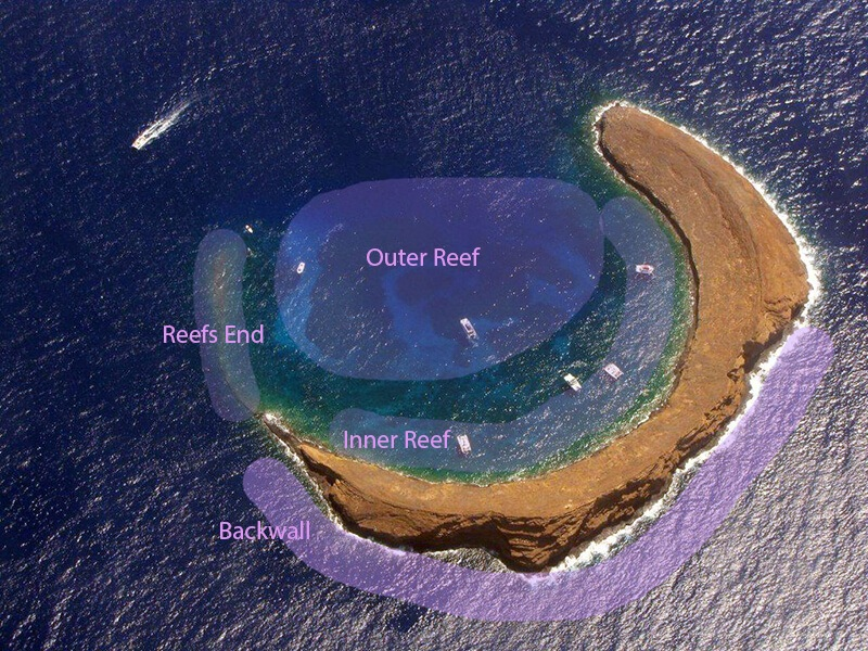 Molokini Dive Sites From Above
