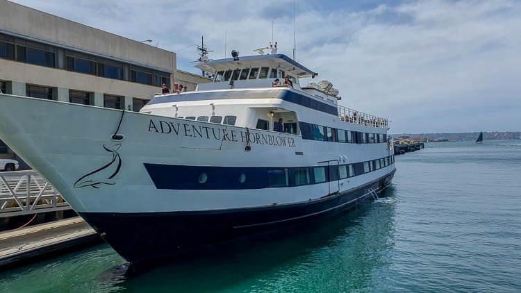 Hornblower bay Cruise