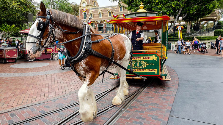 Main Street Vehicles Disneyland California