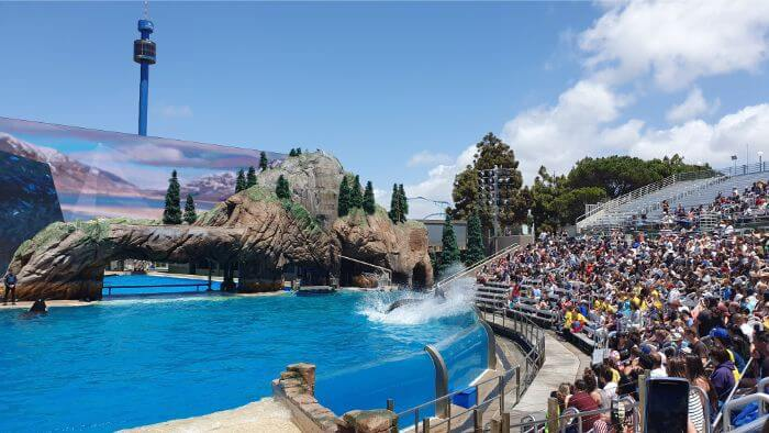SeaWorld Splash Zone