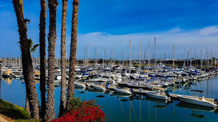 Speedboat San Diego Tour _ Marina
