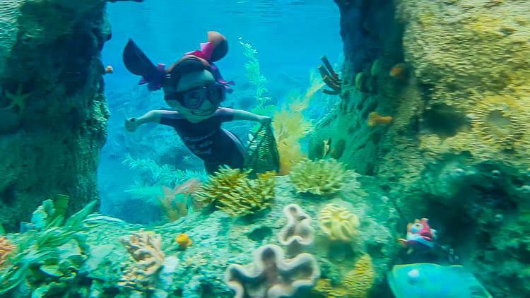 Finding Nemo Darla