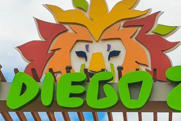 San Diego Zoo Review