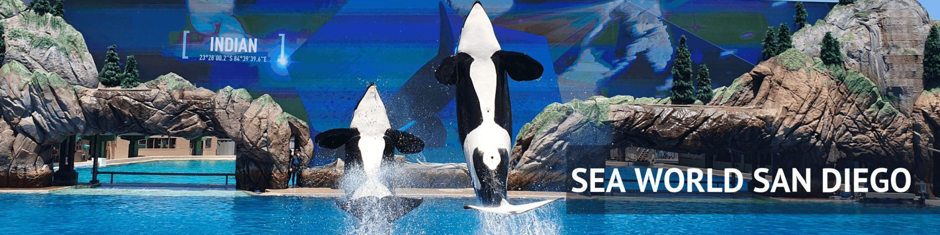 Seaworld San Diego Header