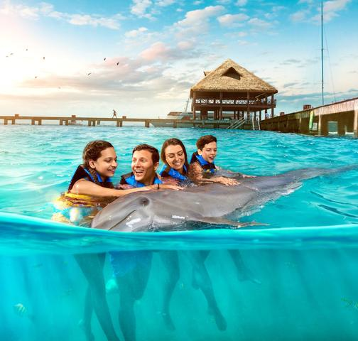 Go Cancun Pass Dolphin Plus