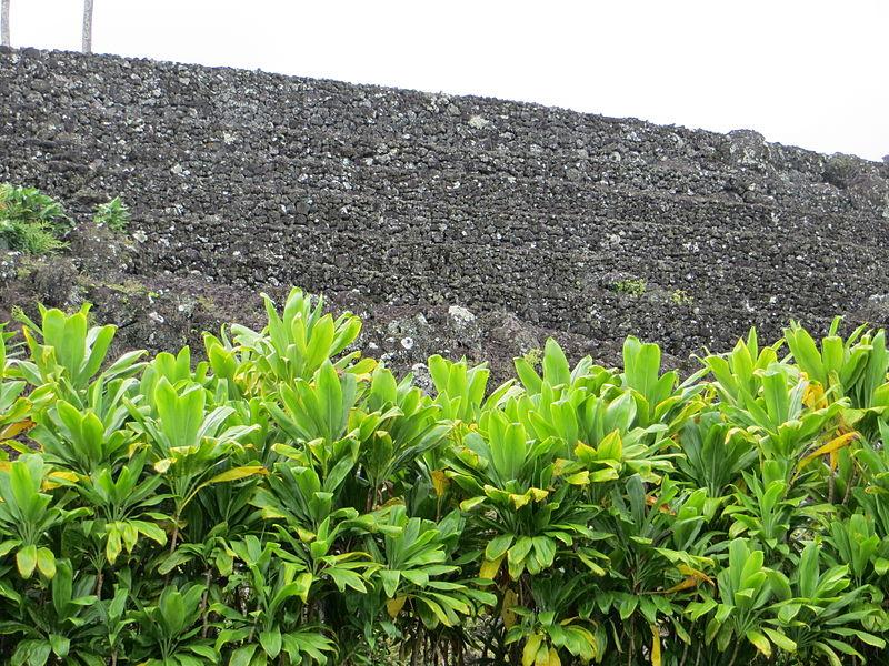 Maui Piilanihale Heiau