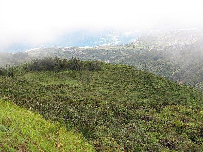 Waihee Ridge Trail Mau