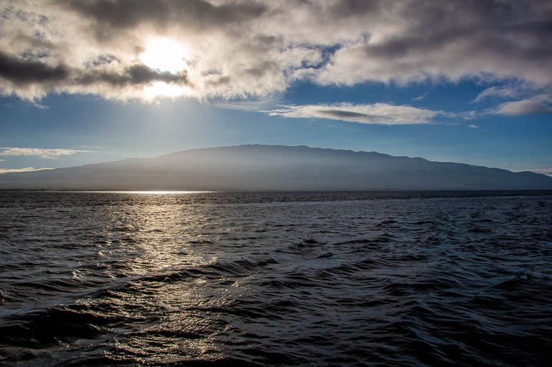 Maui Lassoed the SUN