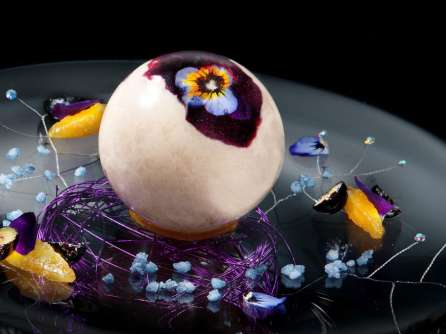joel robuchon dessert sphere